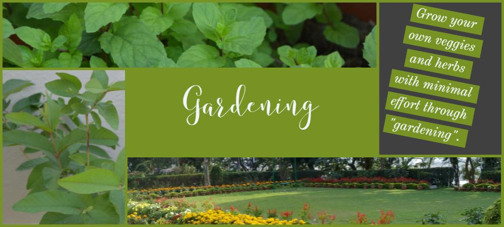 banner image for gardening in homemaking