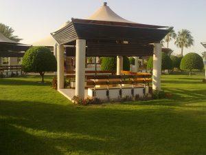 Greenery in Qatar