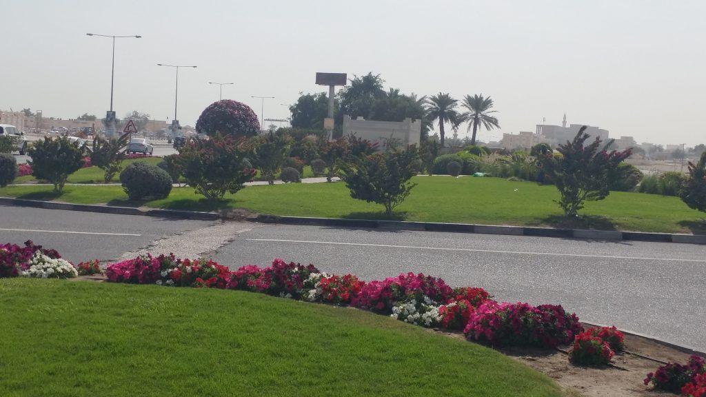 Roadside winter park in Qatar