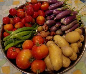 my garden vegetables